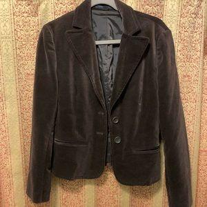 Express brown velvet blazer